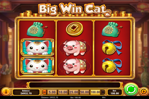 big win cat playn go slot