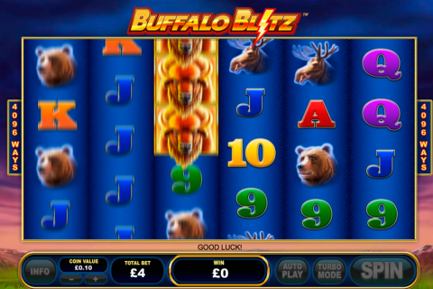 buffalo blitz playtech slot