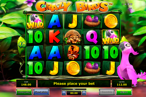 crazy birds novomatic slot