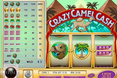 crazy camel cash rival slot