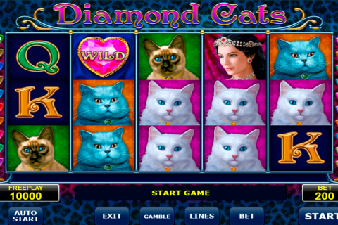 diamond cats amatic slot