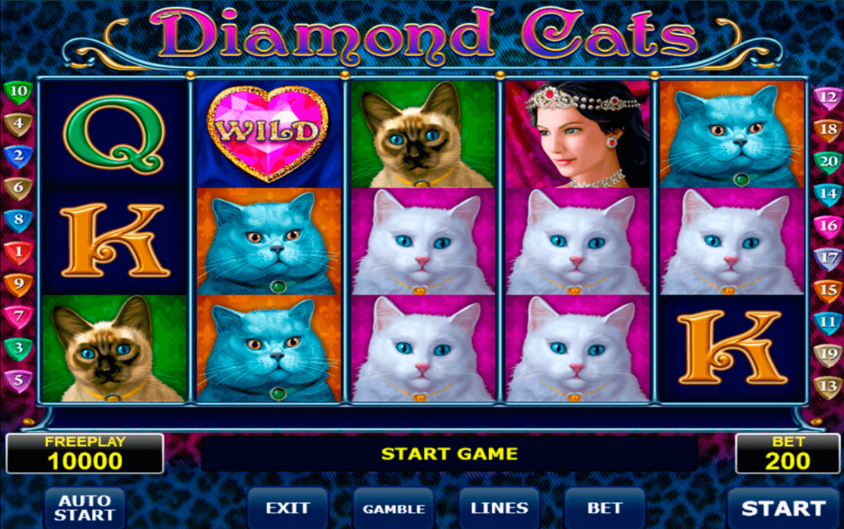 diamond cats amatic slot