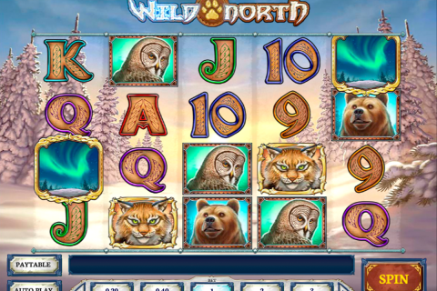 wild north playn go slot