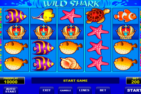 wild shark amatic slot
